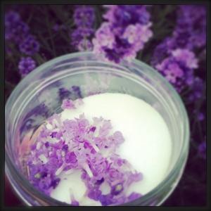lavender+sugar